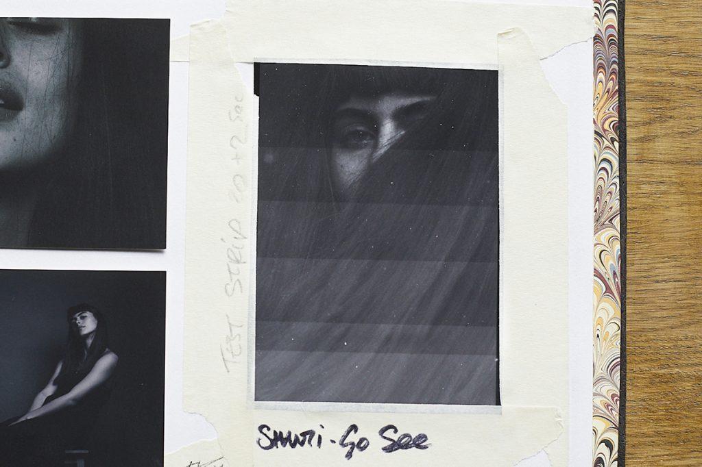skewtchbook-shanti-strip