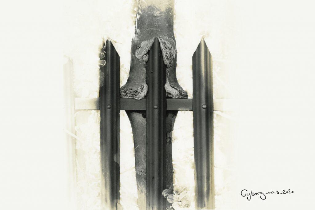 Cyborg_gallery_no-border